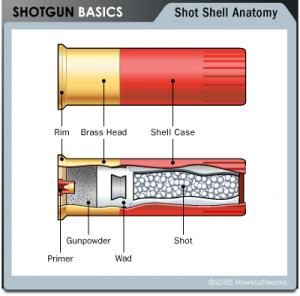 اضغط على الصورة لعرض أكبر  الاســـم:shotgun-shell.jpg المشاهدات:344 الحجـــم:13.6 كيلوبايت الرقم:18258