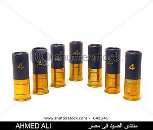 اضغط على الصورة لعرض أكبر  الاســـم:stock-photo--guage-shotgun-shells-641345.jpg المشاهدات:323 الحجـــم:89.1 كيلوبايت الرقم:18261