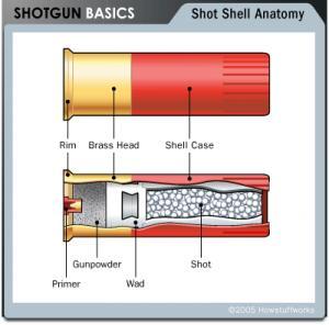 اضغط على الصورة لعرض أكبر  الاســـم:shotgun-shell.jpg المشاهدات:399 الحجـــم:13.6 كيلوبايت الرقم:18258