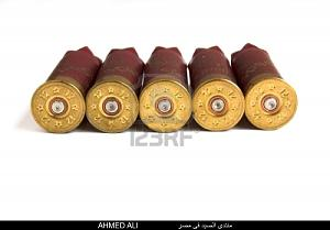 اضغط على الصورة لعرض أكبر  الاســـم:4416469-shotgun-shells-isolated-shotgun-bullets.jpg المشاهدات:338 الحجـــم:97.3 كيلوبايت الرقم:18249